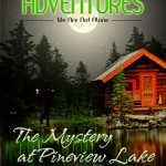ALIEN ADVENTURES: THE MYSTERY OF PINEVIEW LAKE book cover design